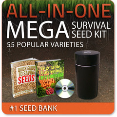 Thumbnail image for All-In-One Mega Seed Bank Winner