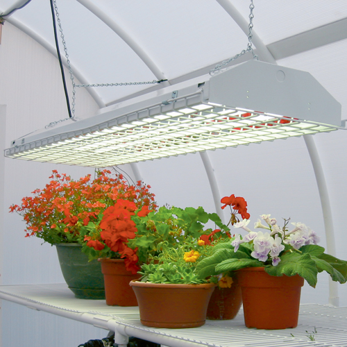 The Best Lights for Indoor Plants Posted May 3, 2013  Tags: garden