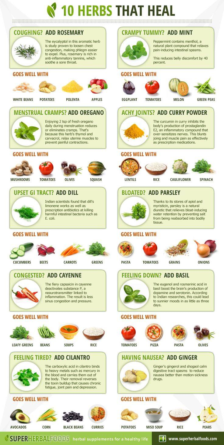 Foods and herbs for ed