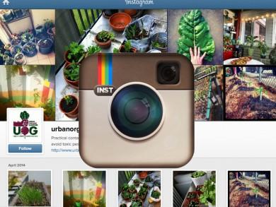 UOG-Instagram