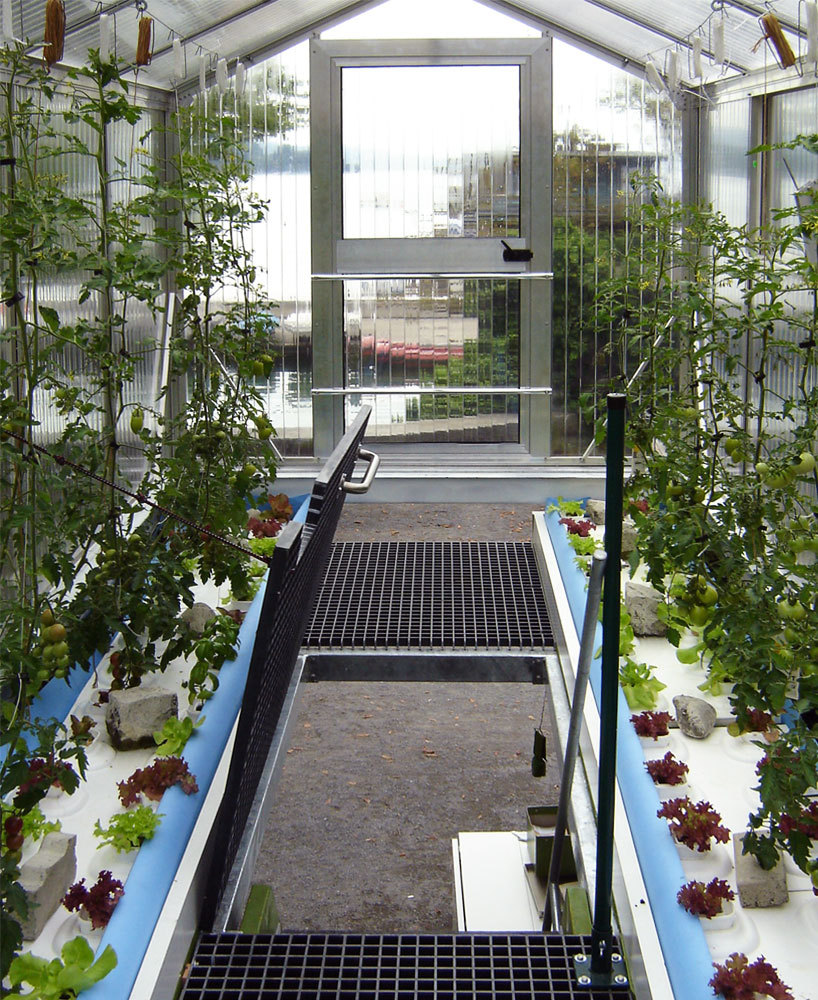 Shipping Container Greenhouses Urban Organic Gardener