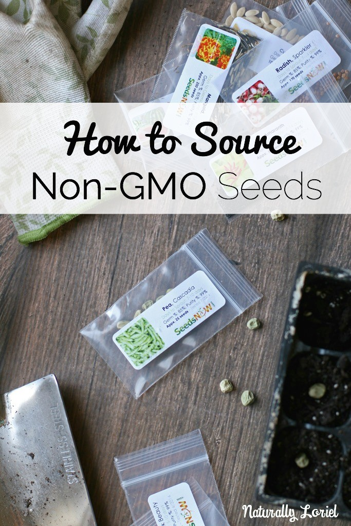 how-to-source-non-gmo-seeds-naturally-loriel-seedsnow-683x1024