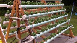 vertical-hydroponic-system-5