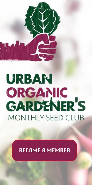 new seed club
