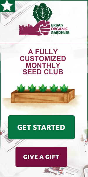 new seed club