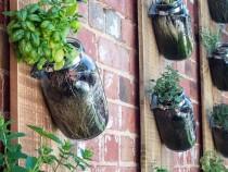 hanging-garden-793x526