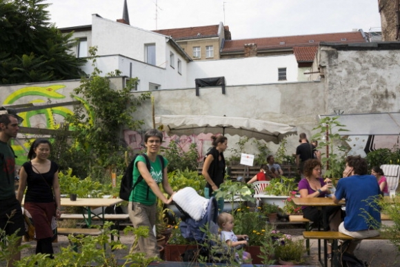 Millenials Have A Love For Urban Gardening Urban Organic