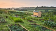 allotment-616251