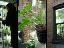 windowfarm_wide-39f20ae872feffb5757abdaa2760d39c0c777f95-s800-c85