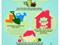 nutrition-in-your-backyard-being-healthier-with-home-gardening_5148d4894626e_w1500