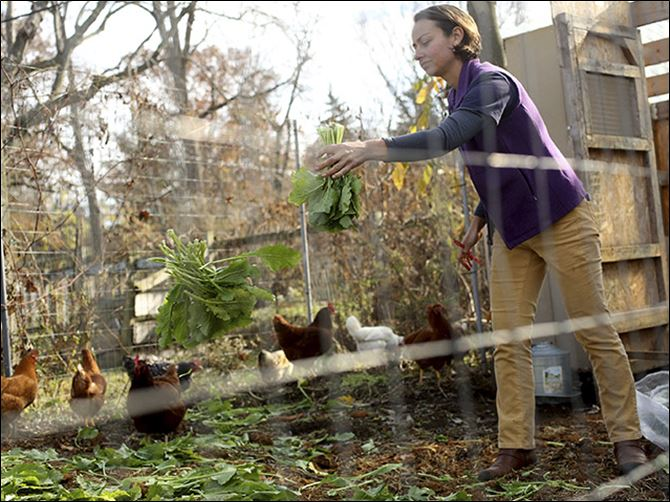 Earning A Living By Urban Farming Urban Organic Gardener