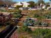 pacific+beach+community+garden