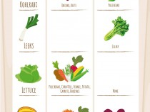 Companion-Planting-Vegetable-Best-Friend-Suggestions-Infographic