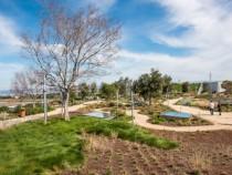 Facebook-rooftop-garden_lead