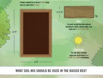 Raised-Beds-Final