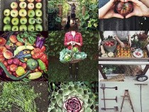Urban-Gardeners-Republic-645x654
