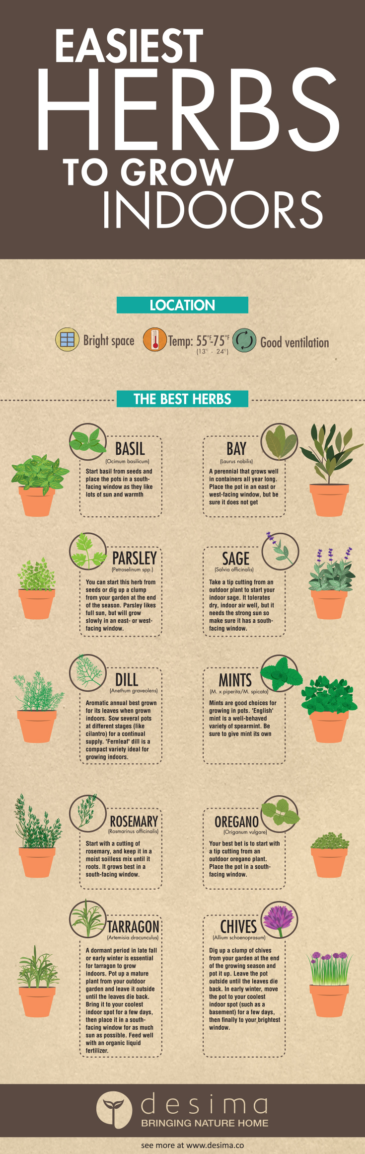 The easiest herbs to grow indoors urban organic gardener - Easiest herbs to grow indoors ...