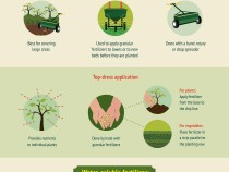 fertilizer-facts-what-when-how-often