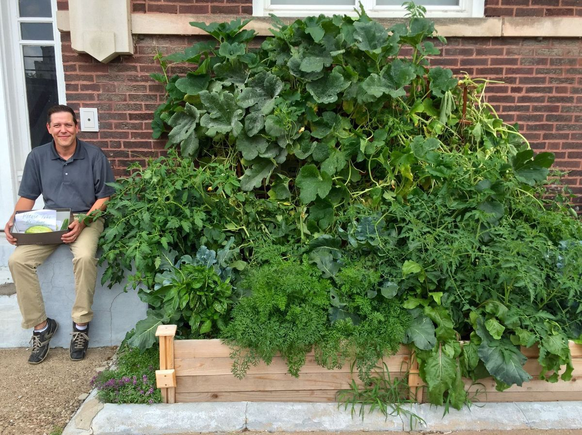 Urban Garden Sprouts Free Food In Downtown Davenport