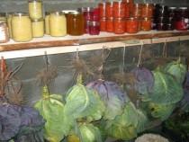 store-vegetable-696x398