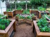 Unique-Raised-Beds-1