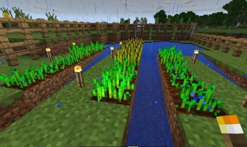 mc-farming-torches-01