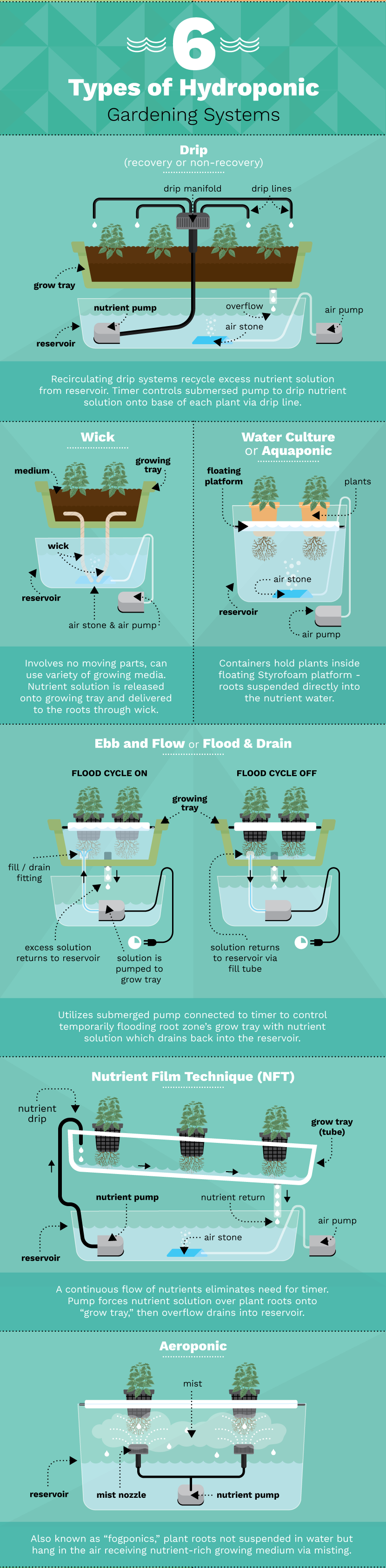 six-types-hydroponic-gardening-systems
