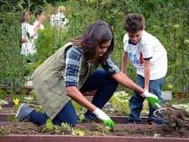obama-last-harvest