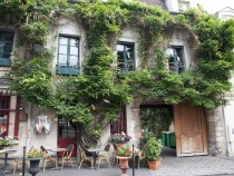 paris-greenery