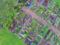 communitygardens1-900x445