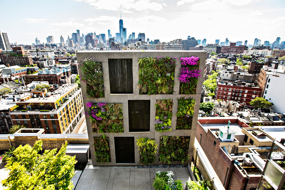 Urban Gardening Taken To New Heights Urban Organic Gardener