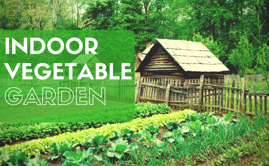 37 edibles you can grow indoors in the winter urban organic gardener - Growing vegetables indoors practical tips ...