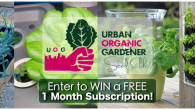 free 1 month subscription