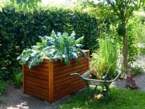 garden-883095_960_720
