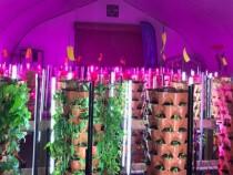 regina-food-bank-greenhouse