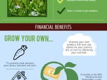 Infographic-gardening