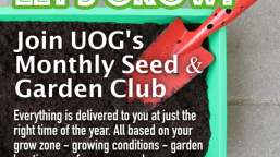 UOG SEED CLUB 600