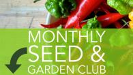UOG IG seed club
