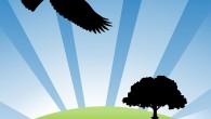 bird-990321_960_720