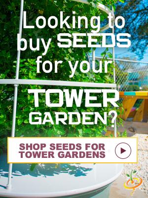 TOWER GARDEN BANNER