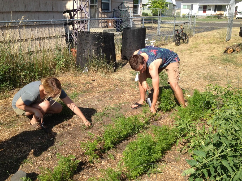 New Program Promotes Urban Gardening Neighborhoods In