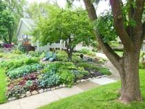 Front-Lawn-Vegetable-Garden