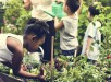 greenschool_rawpixel_sstock