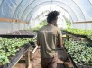 Grow-Dat-Youth-Farm-New-Orleans-9-1020x610