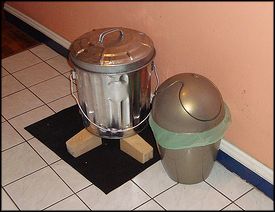 Indoor Kitchen Composting In Your Apartment