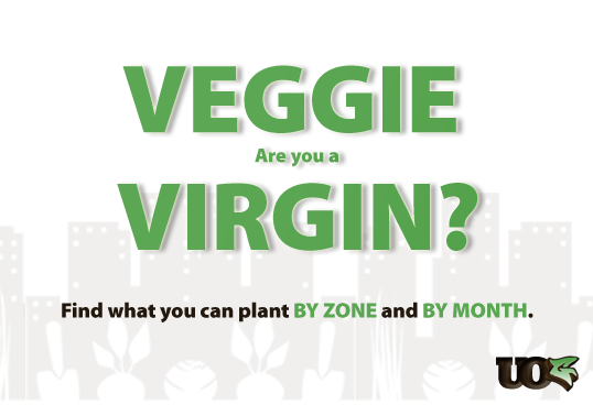 Veggie Virgin: Vegetable Planting Guide/Calendar by Zone and ... on garden design zone 6, winter vegetable garden zone 6, vegetable garden layout georgia, landscape layout zone 6,