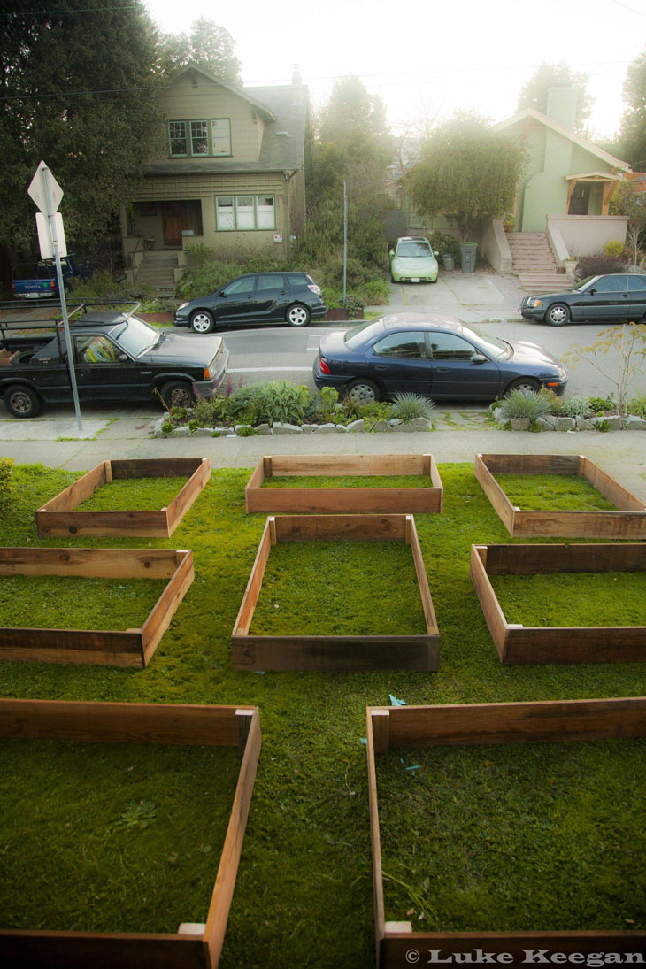 cool-plants-lawn-boxes