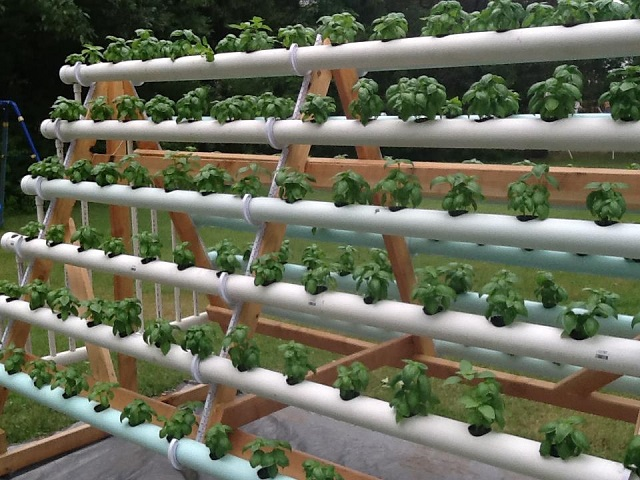 vertical-hydroponic-system-7