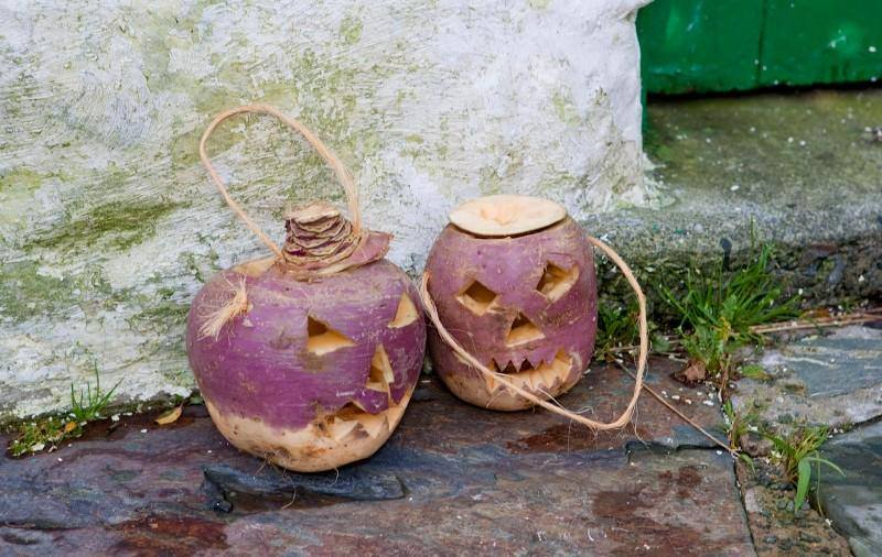 Image result for carved turnip jack o lantern
