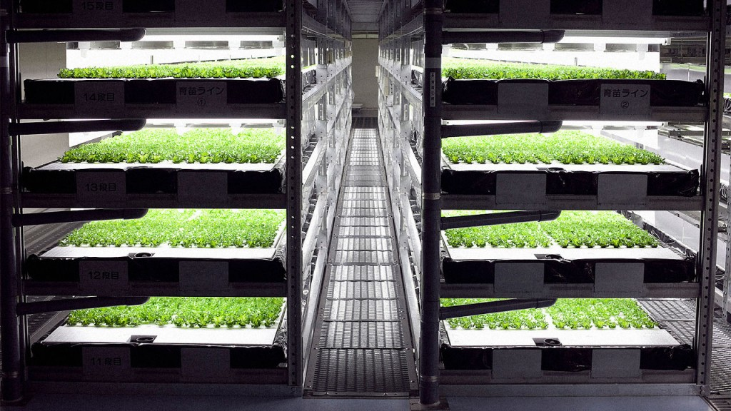 3050750-poster-p-1-this-indoor-farm-run-by-robots-can-grow-10-million-heads-of-lettuce-a-year